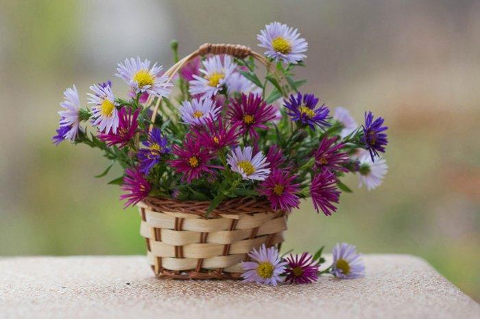 Натюрморт   ароматы цветов и приметы