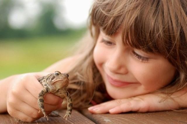От жабы бородавки, а от книг   геморрой: мифы от родителей