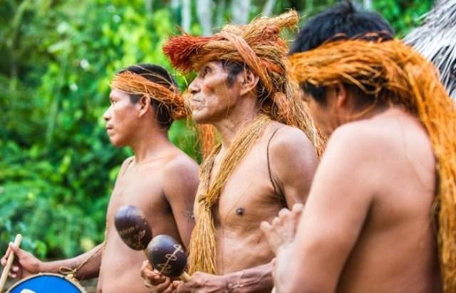 Бразильские старатели убили диких индейцев Амазонки и хвастались этим