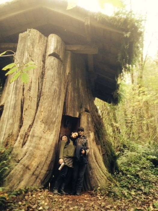Необычные жилища американских поселенцев XIX века