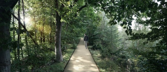 В Дании появится возможность увидеть лес с высоты, прогуливаясь по спиральной тропе