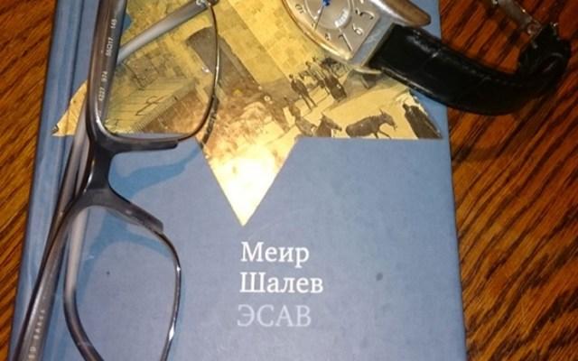 Книга Меира Шалева «Эсав»