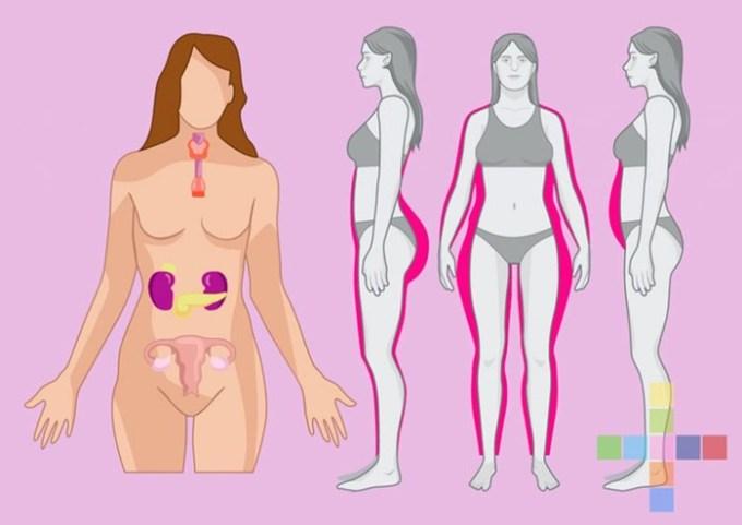 10 признаков, что у вас повышен эстроген! Как вернуть его уровень в норму