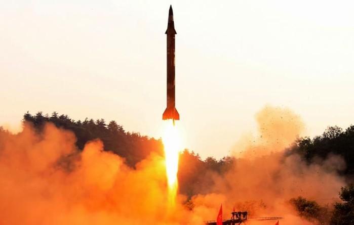Самые неожиданные товары, которые Северная Корея продает на экспорт