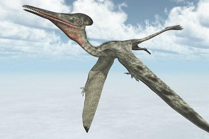 Ученые показали дракона, который доминировал на планете 200 млн лет назад