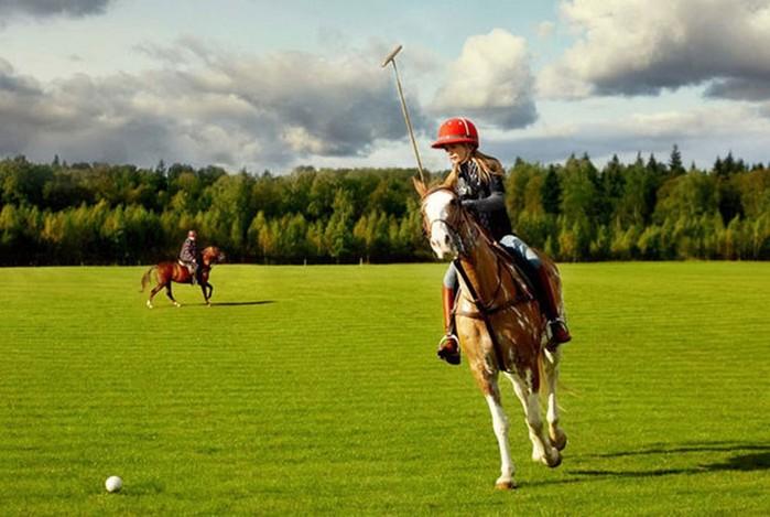 Конное поло: интересные факты о «короле спорта»