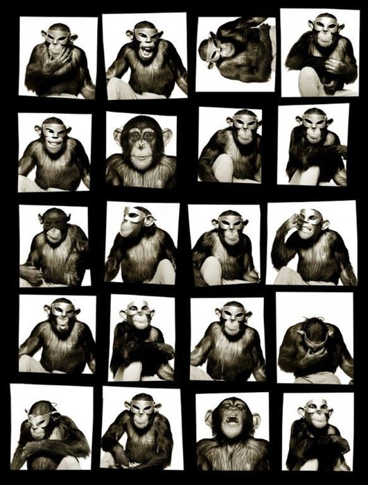 Новый автор календаря Pirelli: самые интересные фотографии Альберта Уотсона