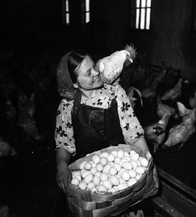 Жизнь в Советском Союзе: 65 ярких фотографий гениальных мастеров