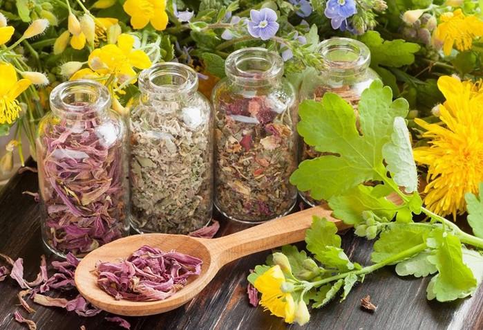 Средства и травы от аллергического насморка