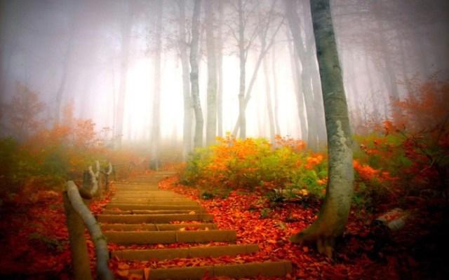 Советы психолога— Как победить осеннее уныние