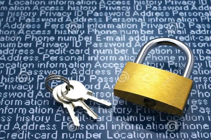 Проблемы защиты персональной информации в Интернете и их решение