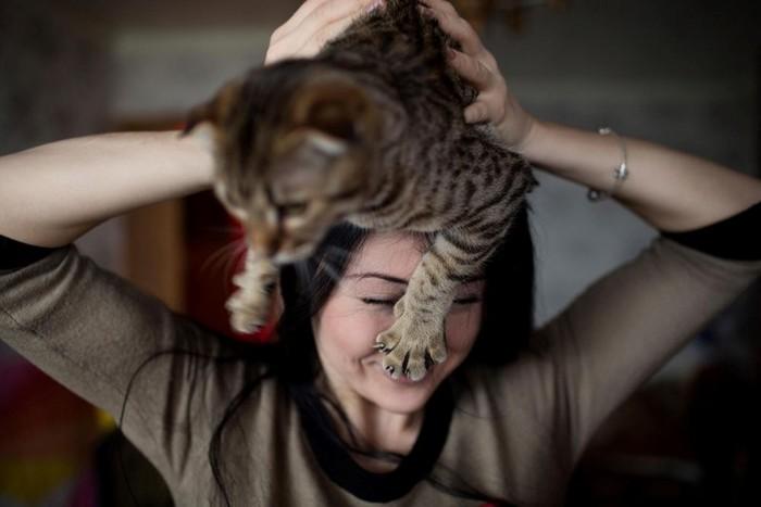 Жизнь с котами как психическая патология