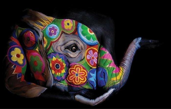 Давайте посмотрим несколько портретов «животных», опубликованных британским изданием