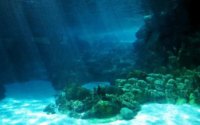 Мировой океан — величайшая загадка планеты