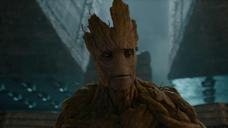 Cute Baby Sorry Hd Wallpaper The Untold Truth Of Baby Groot