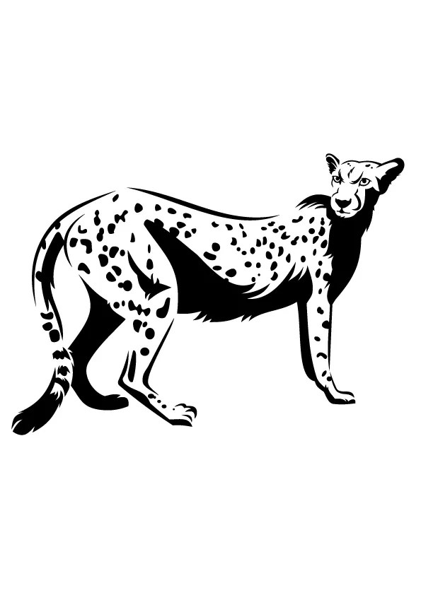 Free Printable Leopard Coloring Pages, Leopard Coloring