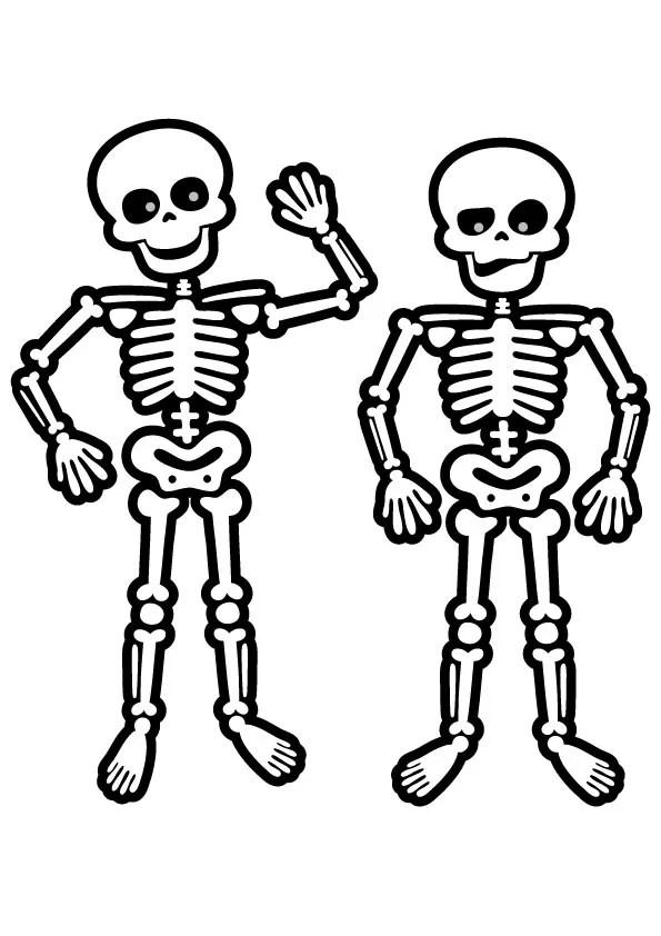 Free & Printable Skeletons & Skulls Coloring Picture