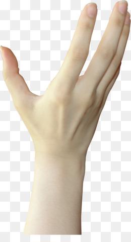 Tangan Menggenggam Png : tangan, menggenggam, Tangan, Meraih, Unduh, Gratis, Kertas, Sketsa, Jahat, Menggenggam, Gambar