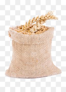 Beras Karung Png : beras, karung, Karung, Unduh, Gratis, Beras,, Goni,, Beras, Gambar
