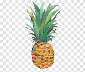 Pineapple Piña Colada Upside down Cake Drawing Painting Plant Outline Transparent PNG