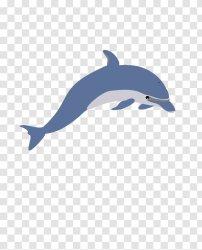 Whale Cartoon Transparent