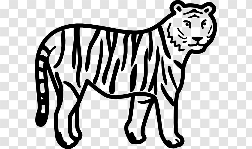 Bengal Tiger Black And White Clip Art Facebook Free Cartoon Drawings Transparent Png