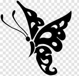 Butterfly Black And White Clip Art Silhouette Transparent PNG