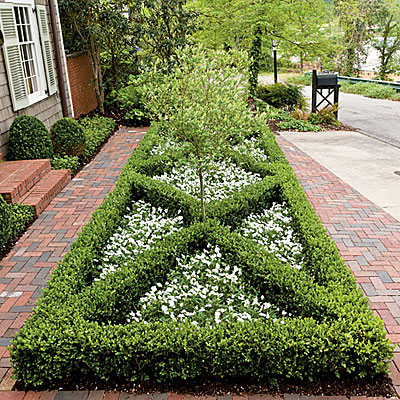 front yard boxwood parterre - landscaping