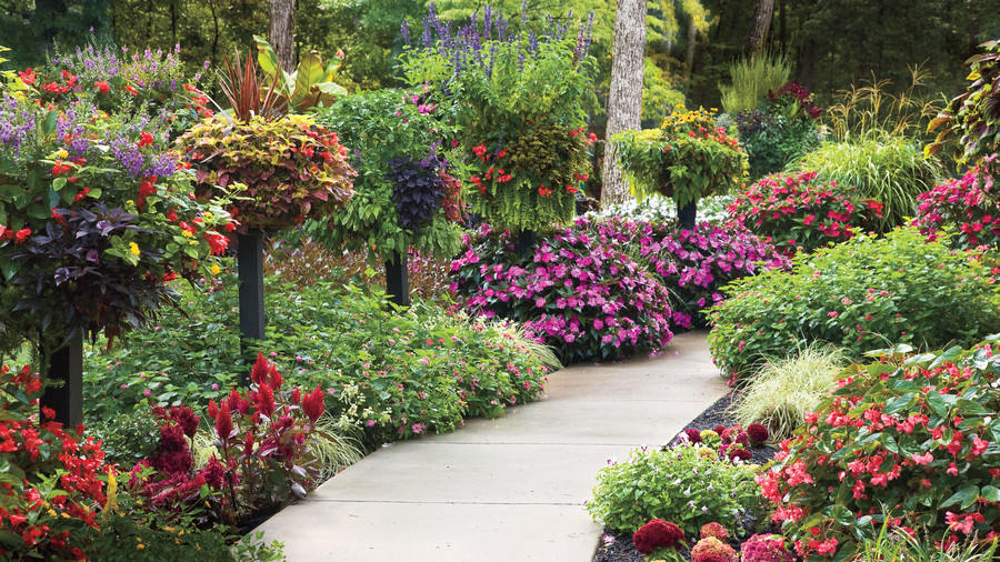landscaping ideas - southern