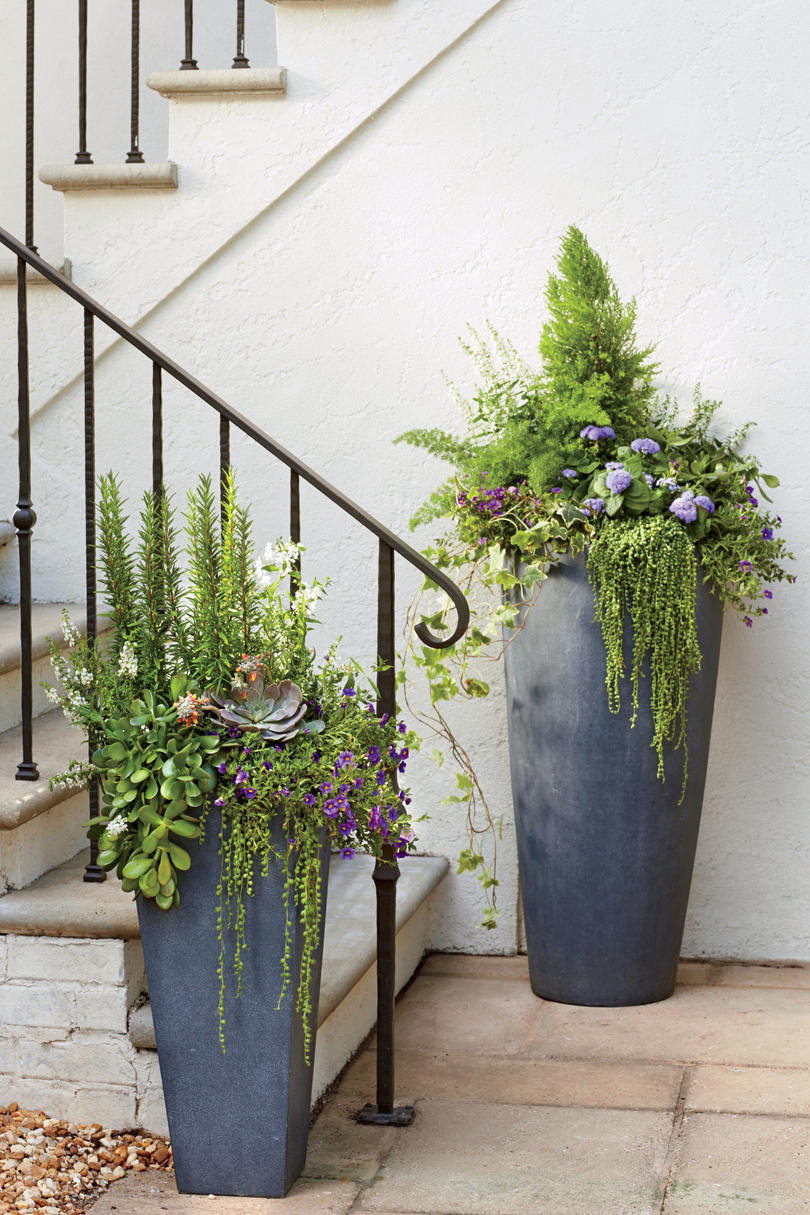 Container Gardening Ideas - Southern Living
