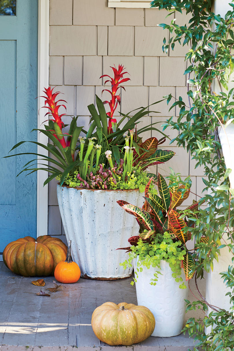 Fall Container Gardening Ideas - Southern Living