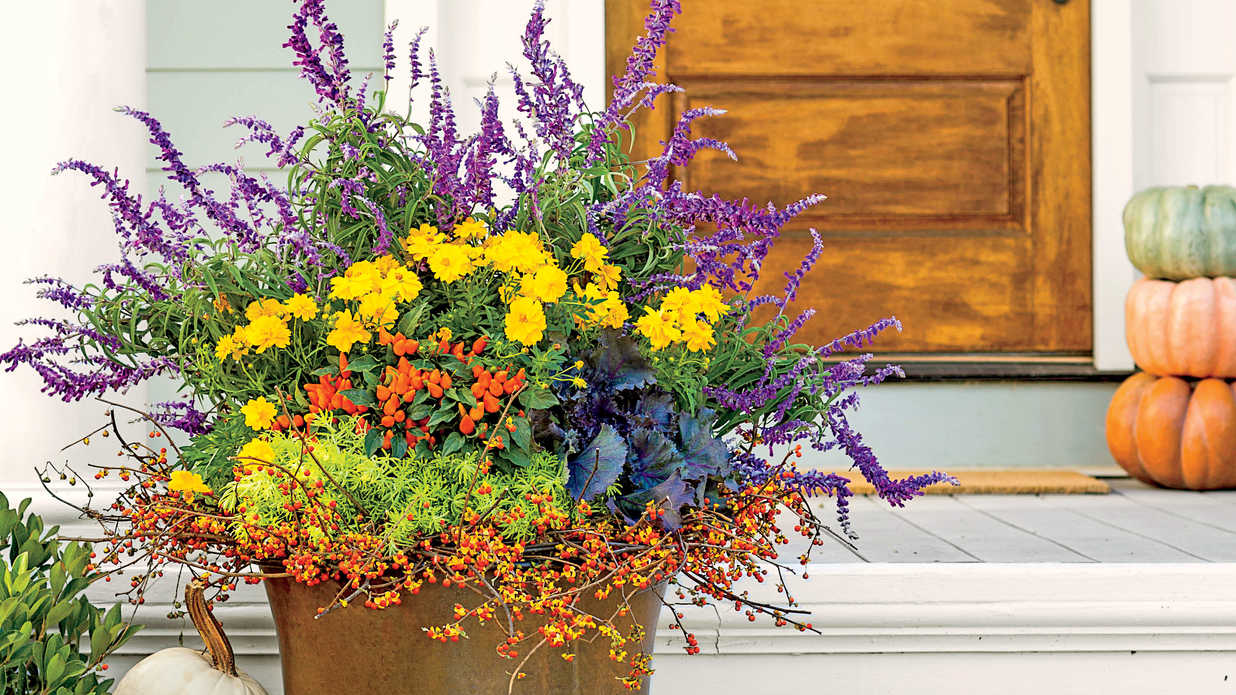 All Fired Up Spectacular Container Gardening Ideas Southern Living