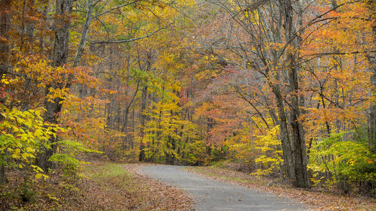 New England Fall Foliage Desktop Wallpaper Best Camping Spots This Fall Southern Living
