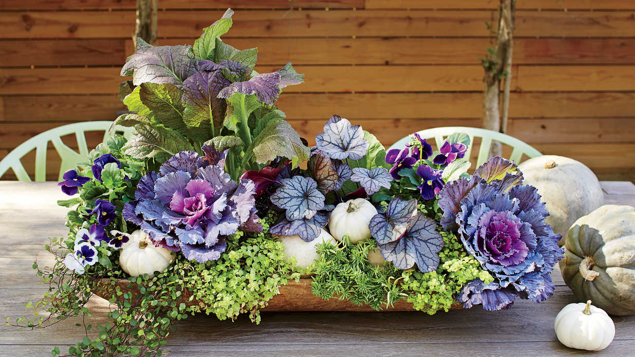 Fall Container Gardening Ideas  Southern Living