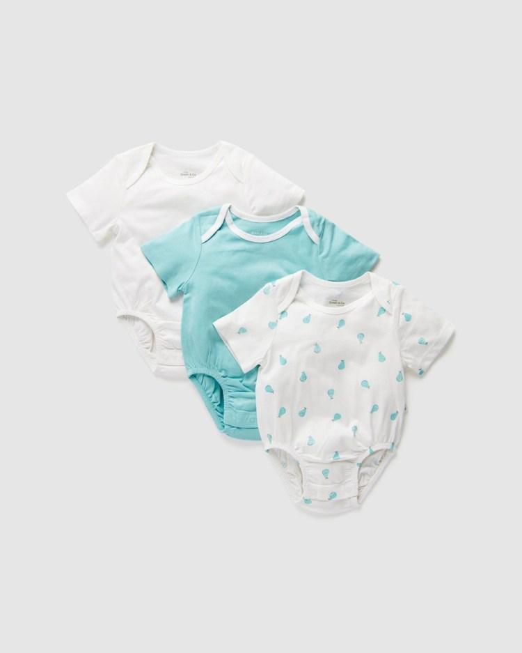 Little Green & Co 3 Pack Jersey Short Sleeve Bodysuit Babies Bodysuits Ice Pear 3-Pack