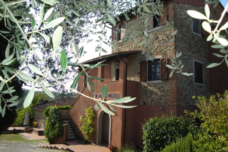 Tenuta San Vito Wine Olive oil a Typical Tuscan Restaurant
