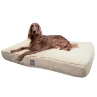 Serta Pet Beds True Response Dog Pillow with Memory Foam ...