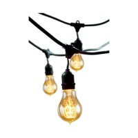 Bulbrite Industries 15 Light Outdoor String Light with ...