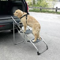 Dog Steps For High Beds And Cars | WebNuggetz.com