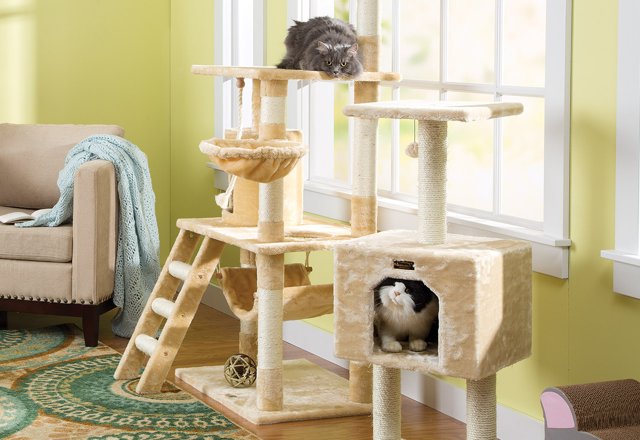 The Cat Lovers Shop