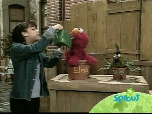 Episode 3905 Muppet Wiki