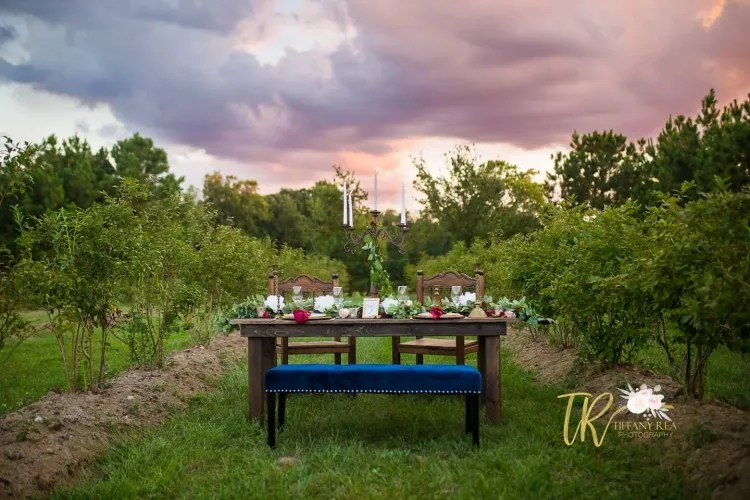 places to borrow tables and chairs eames arm chair somthin borrowed event rentals wedding image118