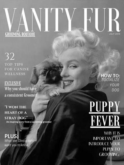 vanity fur grooming boutique