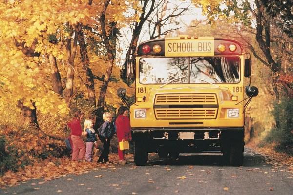 North East Tri-board Student Transportation - School Bus