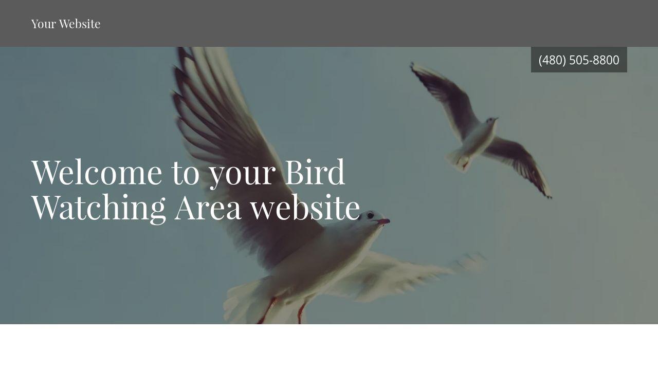 Bird Watching Area Website Templates GoDaddy