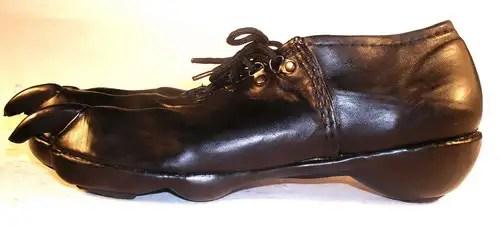 Noticias Curiosas - Zapatos Pata de Oso