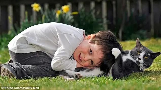 gatoayudaninoautista - Billy, un gato abandonado y adoptado que ayuda cada dia a un niño autista