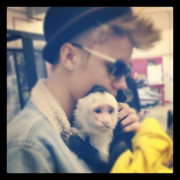 b50ed6f85c6811e29123220 - Mally, el mono capuchino de Justin Bieber, es retenido en el aeropuerto de Múnich