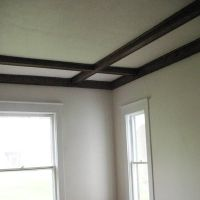 Coffered Ceiling | Save This Old House: Indiana Queen Anne ...