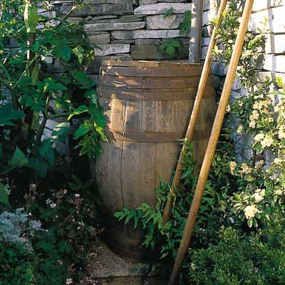 rain barrel near a house